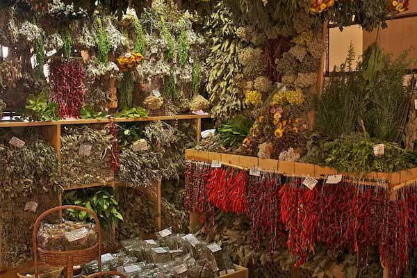 9 hierbas aromáticas